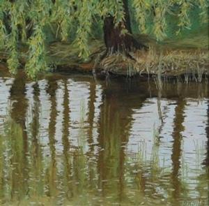 Oliver Kohls | Eiderjollen am Plöner See