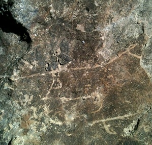 Ancient Fish Trap | Could This Be A Petroglyph ?